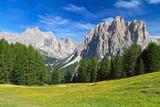 Dolomites - Catinaccio mount