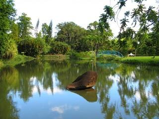 Jardin d'eau de Blonzac, guadeloupe