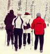 Nordic walking in winter