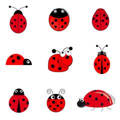 set of ladybugs