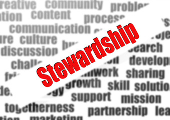Stewardship word cloud