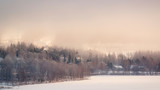 Hazy winter landscape