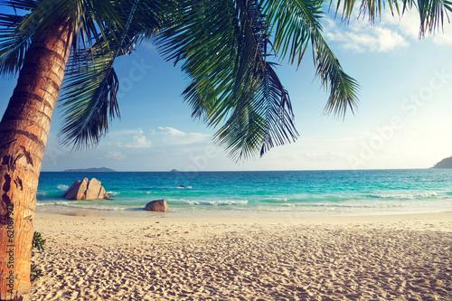 Anse Lazio beach, Praslin island, Seychelles - 62087971