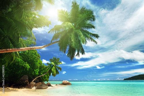 beach on Mahe island, Seychelles © Iakov Kalinin
