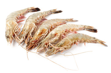 Raw prawns isolated on white background