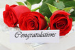 Congratulations card with red roses