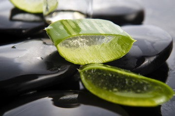 Sliced aloe leaves with oil on the stone