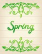 "Lettering ""spring"" with leaves over wood background"