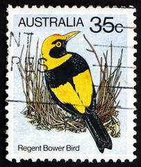 Postage stamp Australia 1980 Regent Bower Bird