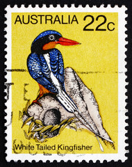 Postage stamp Australia 1980 White Tailed Kingfisher, Bird