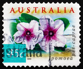 Postage stamp Australia 1999 Beach Morning Glory, Plant