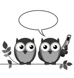 Monochrome owl on mobile phone