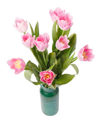 pink tulips in gree vase isolated on a white background