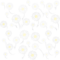 Daisy White Background