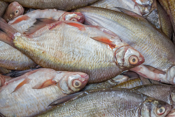 cleaned fish for sale, fish background