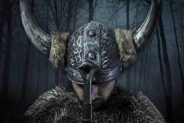 Peace, Viking warrior, male dressed in Barbarian style with swor