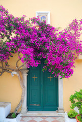 Greek monastery door with beautiful purple flowers