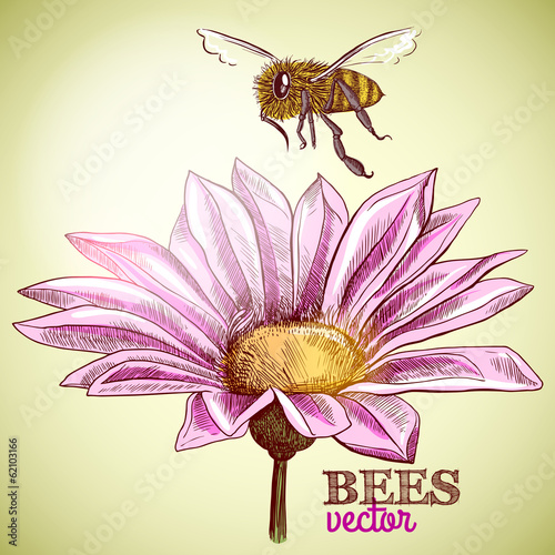 Flying honey bee and blossoming flower background