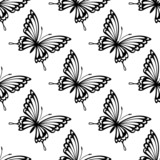 Seamless pattern of flying butterflies