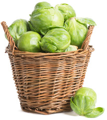Brussels sprout ( .Brassica oleracea L.)