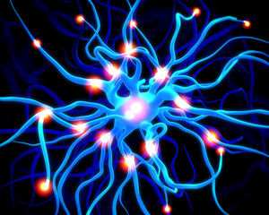 active nerve cell or neurons