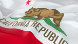 Majestic Flag of California