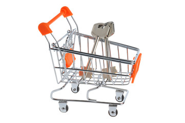 Shopping cart and keys within isolated on white