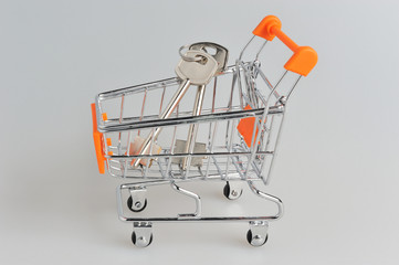 Keys in shopping cart within on gray