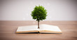 canvas print picture - Tree growing from an open book