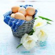 Eggs in a basket and a tulip flower