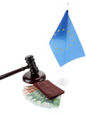 Gavel, money, passport and flag of Europe, isolated on white