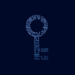 Data security icon. Circuit board key.