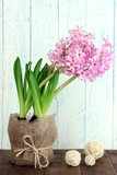 Pink hyacinth in pot on table on wooden background