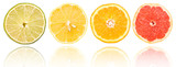 Citrus Fruits Slices Set On White With Reflection
