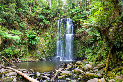 Fotobehang Australië waterfall Tasmania