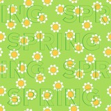 "Seamless pattern of embossed words ""Spring"" on flower background"