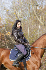 equestrian on horseback