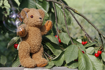 Teddybär mit Seifenblase