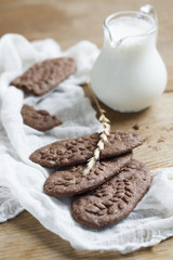 Homemade chocolate and nut cookies with milk