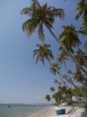 Palm beach boat, mui ne, vietnam