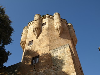 Salamanca 53
