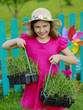 Gardening, planting -  girl with lavender seedlings