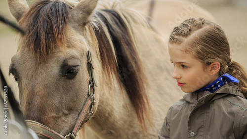 Horse and lovely equestrian girl  - 62139520