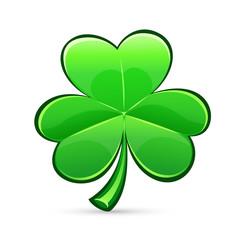 st.Patrick's Day's trefoil