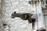 Gargoyle on cathedral of Saint Louis in Blois,