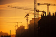 city of construction cranes