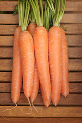 Carrots freshly picked and washed
