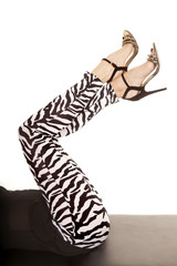 woman legs zebra in heels knees bent