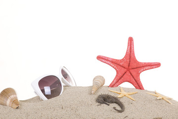 shell and sunglasses on beach, isolated on a white background,wi