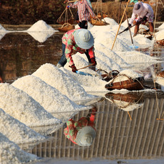 working in the salt field